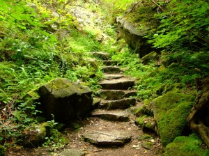 Nature Staircase