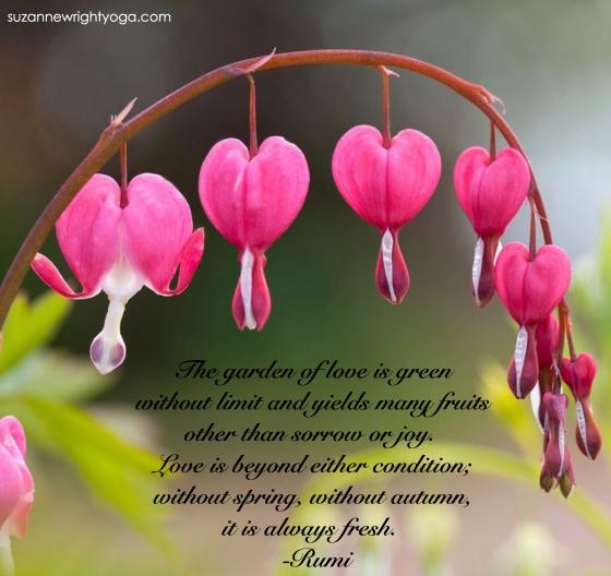 Rumi Love Garden