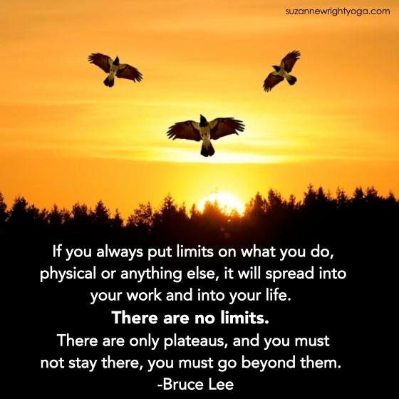 No Limits Lee.jpg